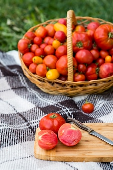 Pokrojone pomidory na desce. zbiór jesienią. na tle dużego kosza pomidorów.