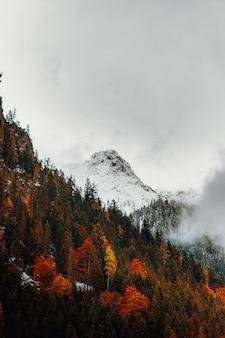 Pokryta śniegiem góra w ciągu dnia