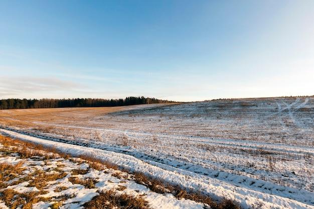 Pokryta śniegiem ziemia w polu, opady śniegu i zimowe mrozy, błękitne niebo