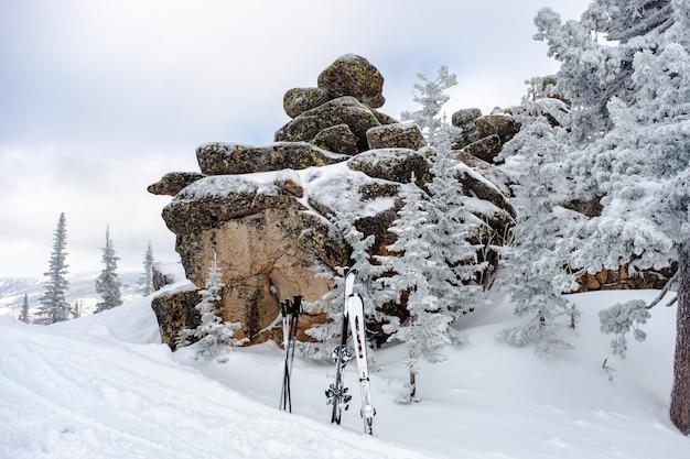 Pokryte śniegiem drzewa i narciarstwo górskie na szczycie górskiego aktywnego wypoczynku zimowego ośrodka narciarskiego sheregesh w rosji