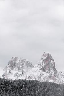 Pokryte śniegiem góry przez las w sezonie zimowym