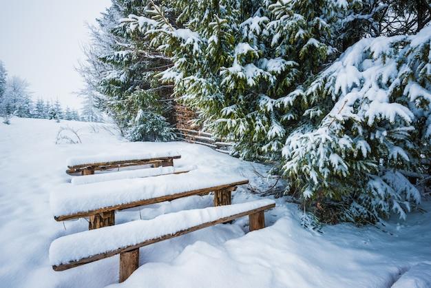 Pokryte śniegiem ławki stoją w wysokich zaspach