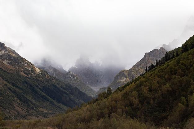 Pokryte śniegiem pasmo górskie w chmurach. gęsty las na zboczach górskich kaukazu, rosja