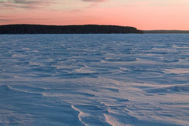 Pokryte śniegiem pole wczesnym mroźnym porankiem.