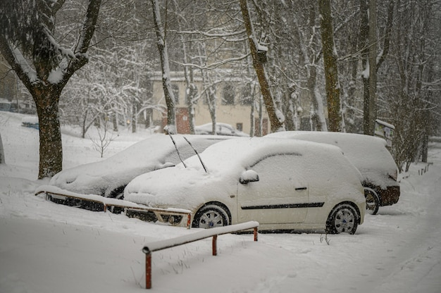 Pokryte śniegiem samochody utknęły na parkingu