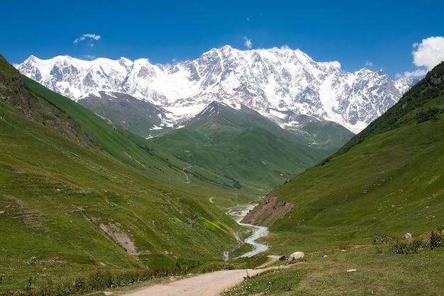 Pokryte śniegiem szczyty góry shkhara i rzeka przepływają między zielonymi wzgórzami w pobliżu wioski ushguli w jasny, słoneczny dzień. zdjęcie z miejscem na tekst.