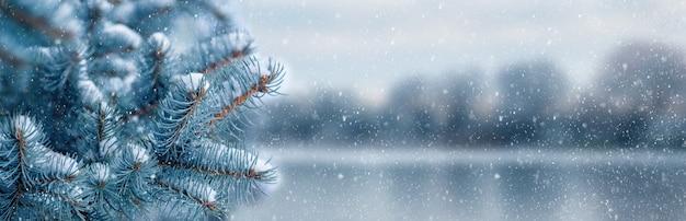 Pokryty śniegiem świerk w pobliżu rzeki podczas opadów śniegu