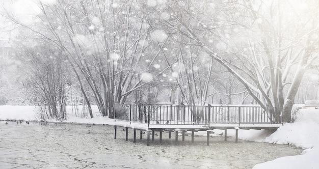 Pokryty śniegiem zimowy park i ławki. park i pomost do karmienia kaczek i gołębi. pierwszy śnieg pokrył jesienny park.