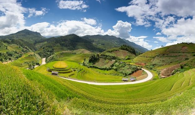 Pola ryżowe na północny zachód wietnamu