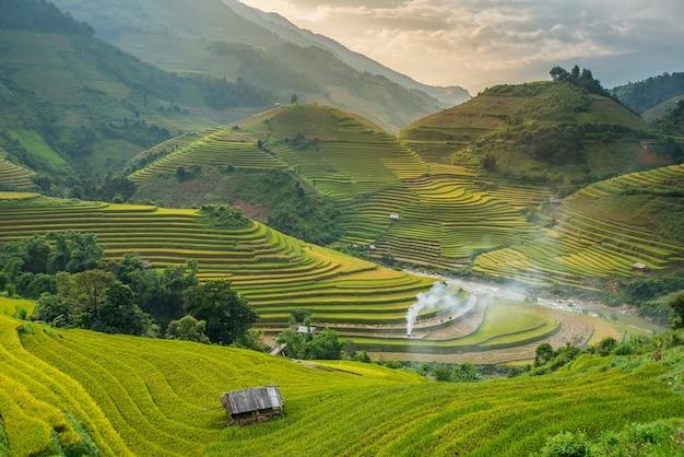 Pola ryżowe na tarasie o zachodzie słońca w tule, yen bai, wietnam