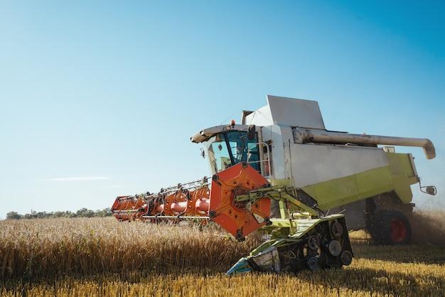 Połącz kombajn zbożowy zbiera dojrzałej pszenicy koncepcja tła obrazu rolnictwa bogatych zbiorów