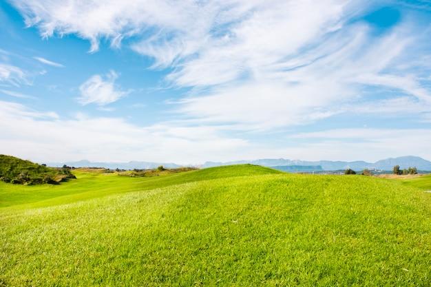Pole golfowe w belek. zielona trawa na polu. błękitne niebo, słoneczne