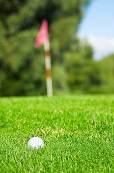 Pole golfowe w ciągu dnia
