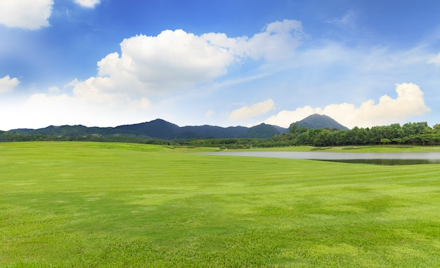 Pole golfowe z zieloną trawą i drzewami w pięknym parku pod niebieskim niebem