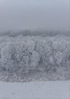 Pole i białe mrożone drzewa we mgle w zimie, widok z lotu ptaka z wysokości