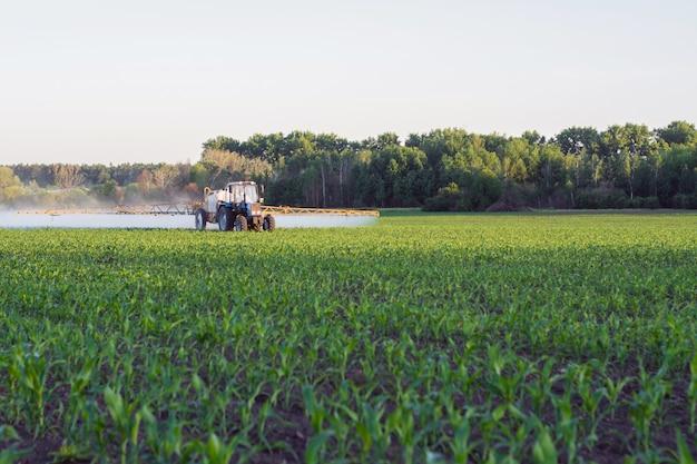Pole młodej kukurydzy, na końcu którego rozprowadzany jest opryskiwacz samojezdny