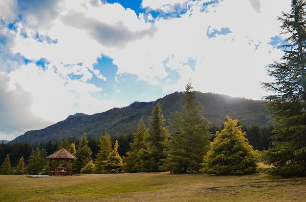 Pole otoczone wysokimi górami pokrytymi zielenią pod zachmurzonym niebem
