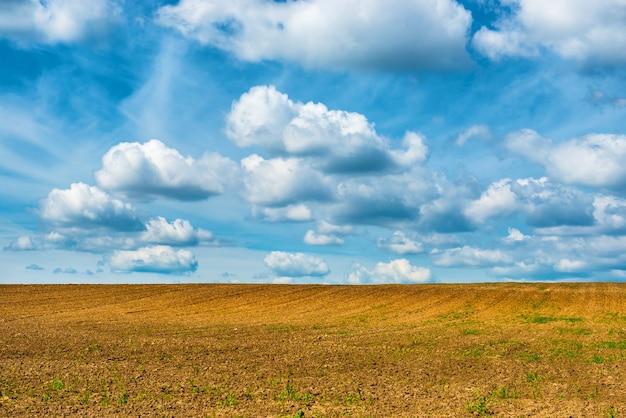 Pole rolnictwa i błękitne niebo z chmurami