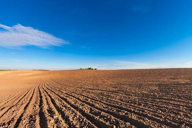 Pole rolnicze jesienią.