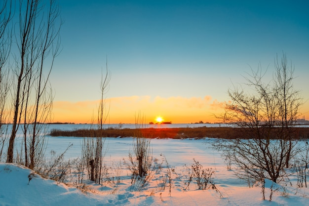 Pole śniegu w słoneczny dzień zimy