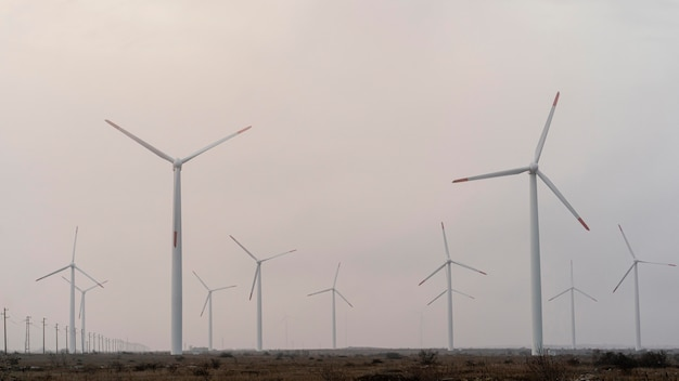 Pole z dużą ilością turbin wiatrowych wytwarzających energię elektryczną