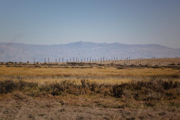 Pole zielona trawa w pobliżu góry pod błękitnym niebem w ciągu dnia