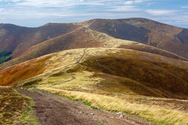 Polna droga przez grzbiet górski porośnięty pożółkłymi krzakami i jagodami.