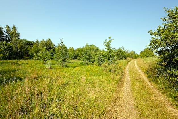 Polną drogą znikającą wieś wraz z torem.
