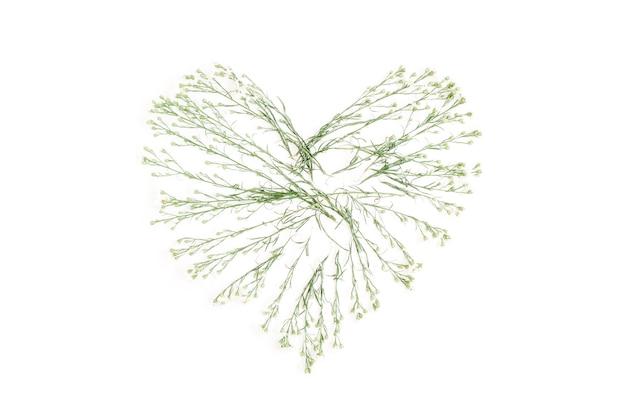 Polne kwiaty kształt serca płasko świeckich koncepcji miłości