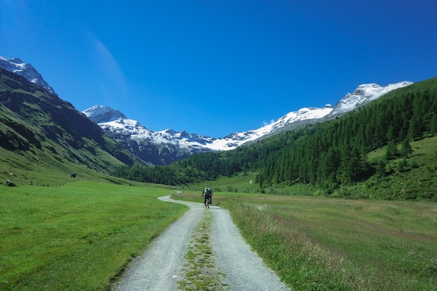 Polnej drodze w wysokich górach na rowerze górskim