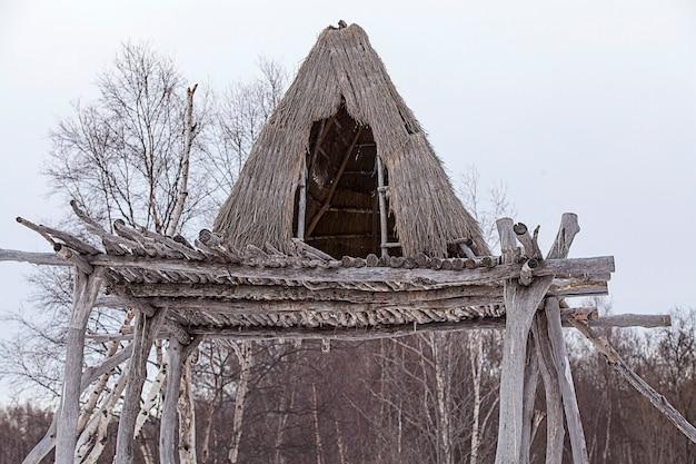 Północna chata aborygenów na drzewie zimą