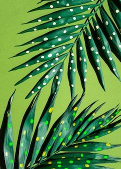 Połówki gałęzi paproci z widokiem z góry malowane kropki