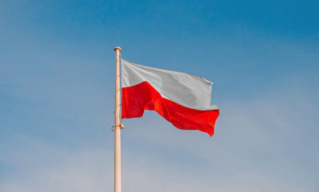 Polska flaga narodowa na niebie