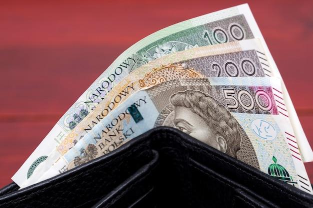 Polskie pieniądze - złotówka w portfelu