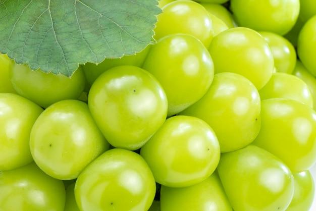Połysk winogron muscat na białym tle zbliżenie