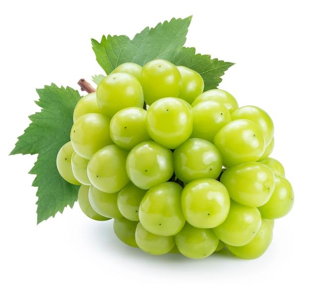 Połysk winogron muscat na białym tle