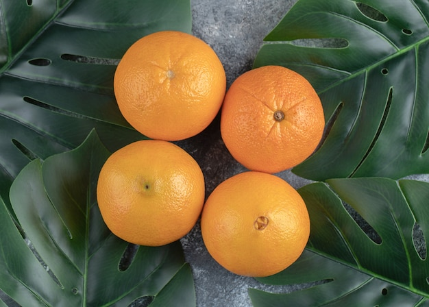Pomarańcze i liście na marmurowym stole.