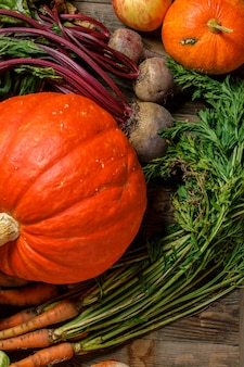 Pomarańczowa dynia i warzywa do zbioru