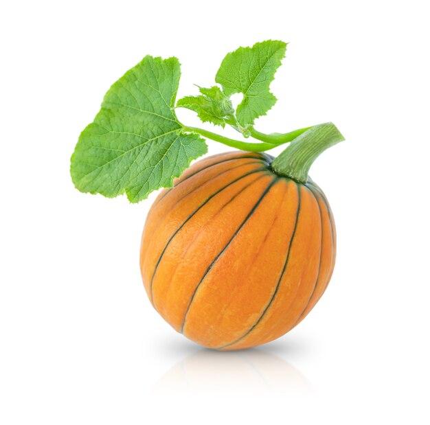 Pomarańczowa dynia z zielonym liściem na białym tle
