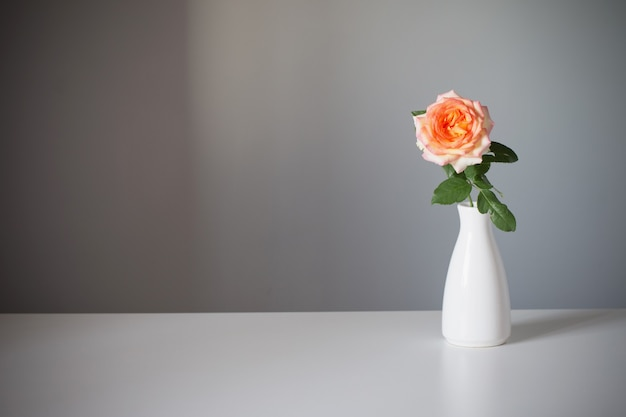Pomarańczowa róża w białym wazonie na szarym tle