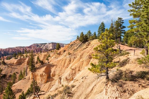 Pomarańczowe kolory w tym kultowym widoku na park narodowy bryce canyon, usa