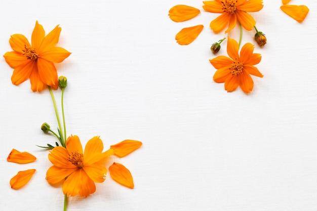 Pomarańczowe kwiaty układ kosmosu mieszkanie leżał styl pocztówki