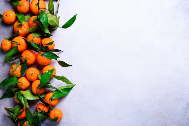 Pomarańczowe mandarynki (pomarańcze, mandarynki, klementynki, owoce cytrusowe) z zielonymi liśćmi na świetle, kopia przestrzeń. z kopią miejsca na tekst
