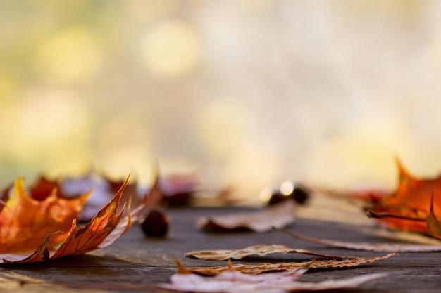 Pomarańczowi jesień liście na drewnianym stole