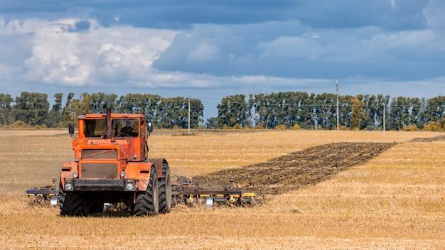 Pomarańczowy, nowoczesny ciągnik zarzuca ziemię w złote pole pszenicy w letni dzień