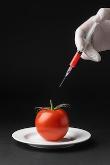 Pomidorowy gmo science food