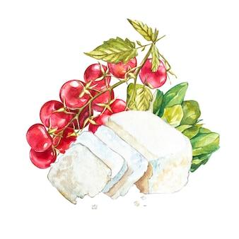 Pomidory czereśniowe na winorośli z serem ricotta. akwarela ilustracja.