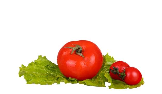 Pomidory i sałata na białym tle