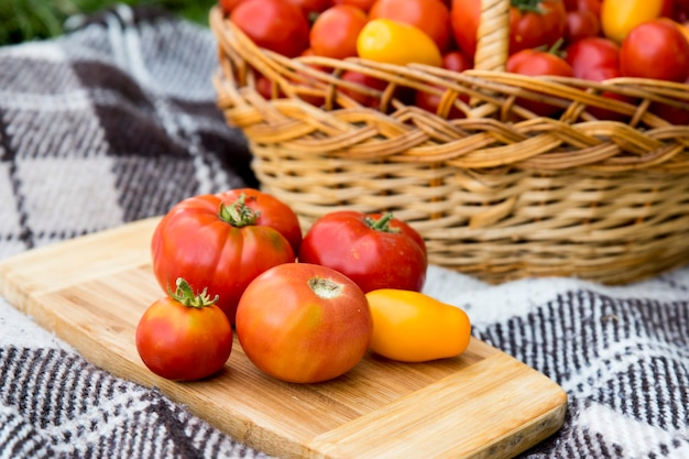 Pomidory na desce. zbiór jesienią. na tle dużego kosza pomidorów.