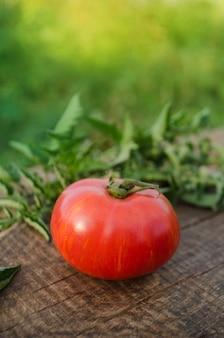 Pomidory na drewnianym stole. sterta świeżych pomidorów na drewnianym stole. koncepcja produktu naturalnego. zdrowy tryb życia. różowe pomidory berkeley tie dye
